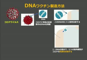 遺伝子組み換えワクチンの恐怖
