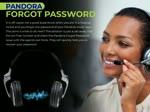 Reset Pandora Password on iphone