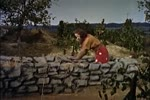 Bible Series: Old Testament - Episode 8 - Gideon, the Liberator