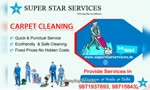 Professional carpet cleaning at the comfort of home