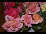 Să nu uităm nicicînd să iubim trandafirii