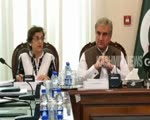PoK activist says Pakistan PM Khan's assurance of referendum in PoK 'farcical'