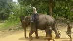 Riding An Old Elephant First Time In Sri Lanka