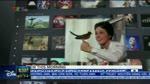 Đài TH Việt Nam | VTV1 - Hình hiệu Chống buôn lậu hàng giả bảo vệ người tiêu dùng