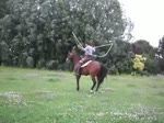 Salta caballo