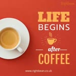 Life Begins after coffee -  Artisan Roast Coffee Beans