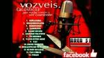 VOZ VEIS - UNA NOCHE COMUN Y SIN CORRIENTE (2010)(FULL ALBUM)