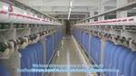 Professional Nylon Yarn Manufacturer Wholesale Salud China