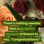 Lush Life Garden & Flowers 146 E Andrews Dr NW Atlanta GA 30305 (404) 841-9661 Atlanta Florist
