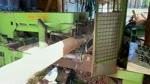 Plywood Production - Log Peeling
