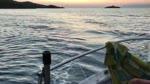 2021 temmuz 17 öğretmenlere ve sağlıkçılara indirimli tekne turları balık avı turları yer Marmaris